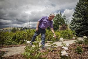 Peony garden celebrates University of Montana couple