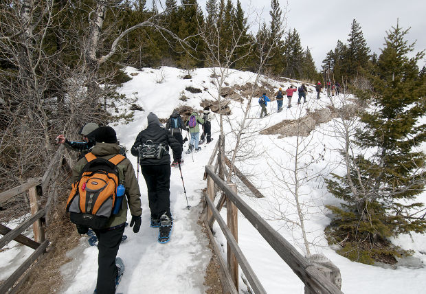 Hikers showshoe up a trail