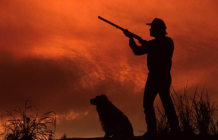 hunter hunting stockimage