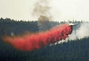 Researchers: Wildfire debate misses crucial science