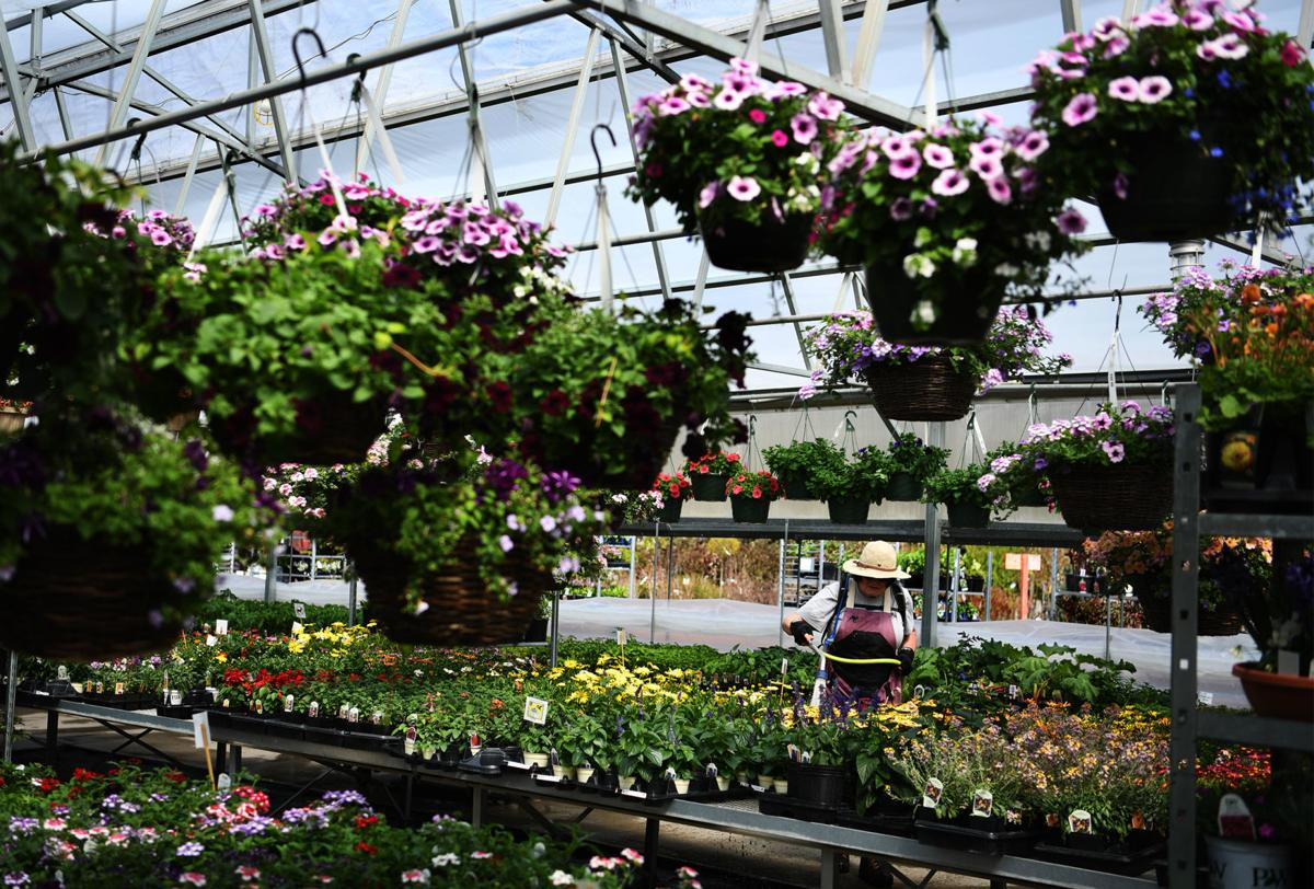 043019 flowers-1-tm.jpg