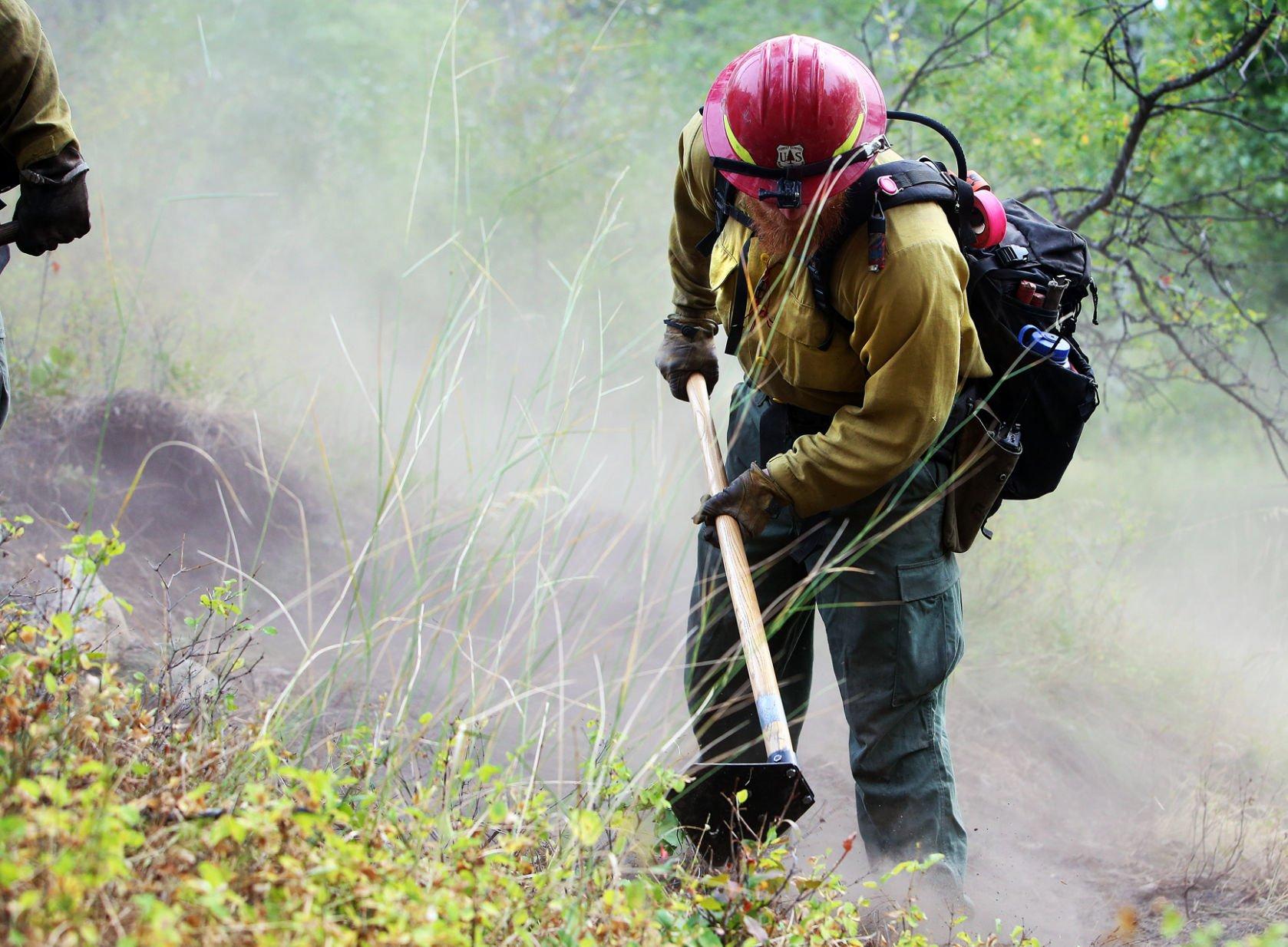 Wildland firefighter, 19, killed by falling tree near Seeley Lake