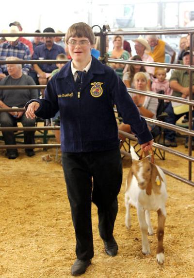 081113 auction goat.JPG
