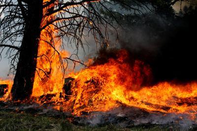 Westfork Fire