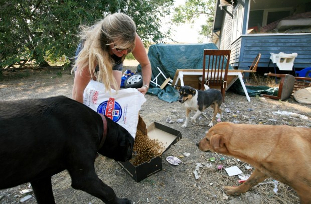 Sheri Lee puts out food for three dogs