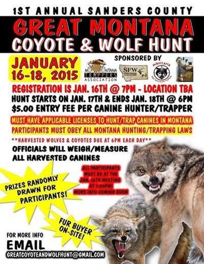 Great Montana Coyote and Wolf Hunt poster