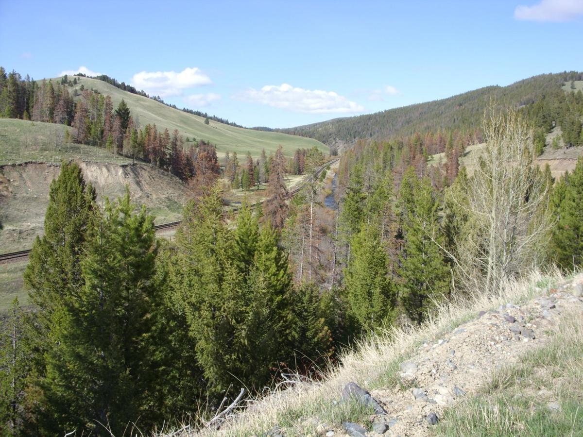 Mullan Pass near Elliston
