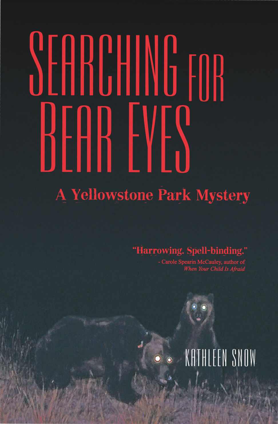 searching for bear eyes book cover