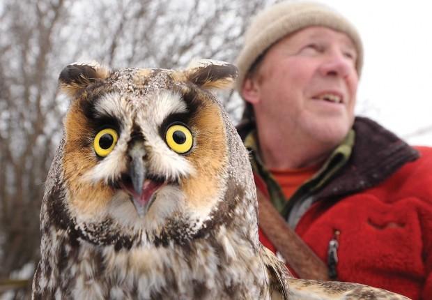 021011 owls7 mg