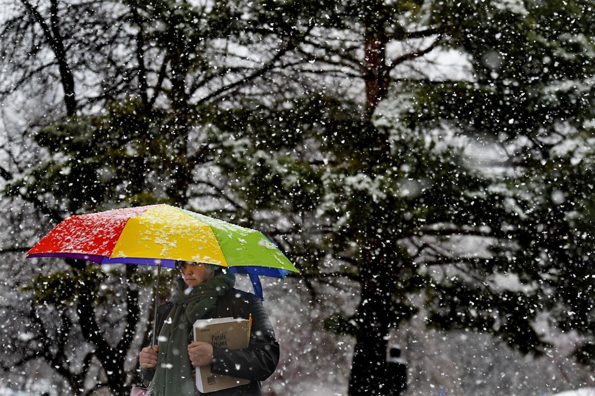041019 snow-tm.jpg