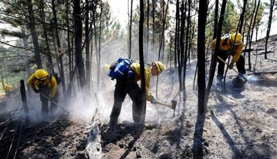 Western Wildfires Montana