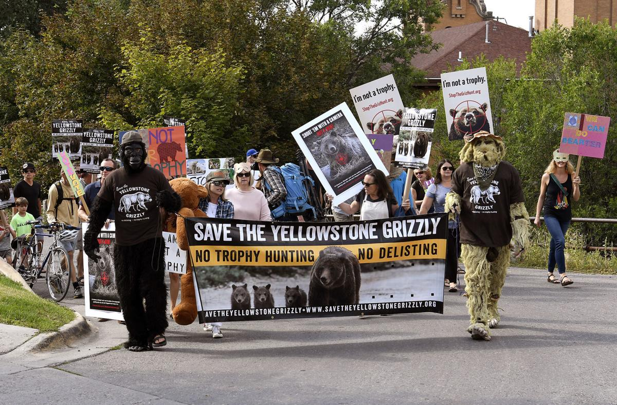 Grizzly Hunt Protest 1