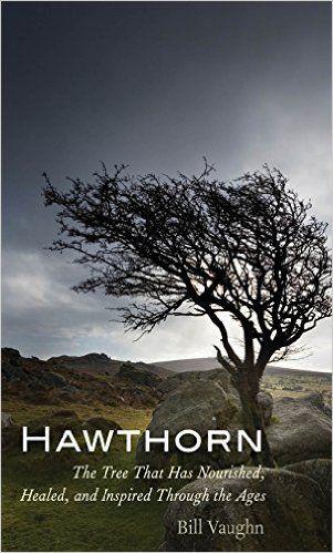 Bill Vaughn, 'Hawthorn'