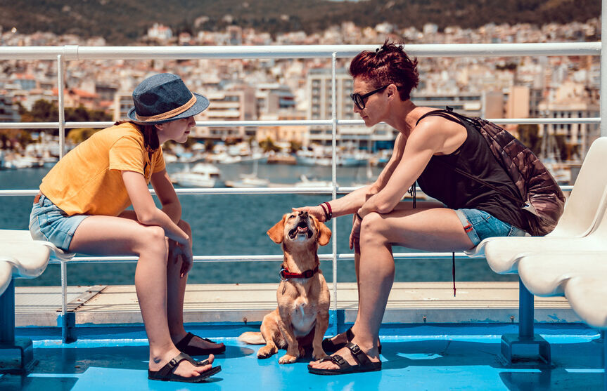 All paws aboard!  Canine cruises to bark about (image)
