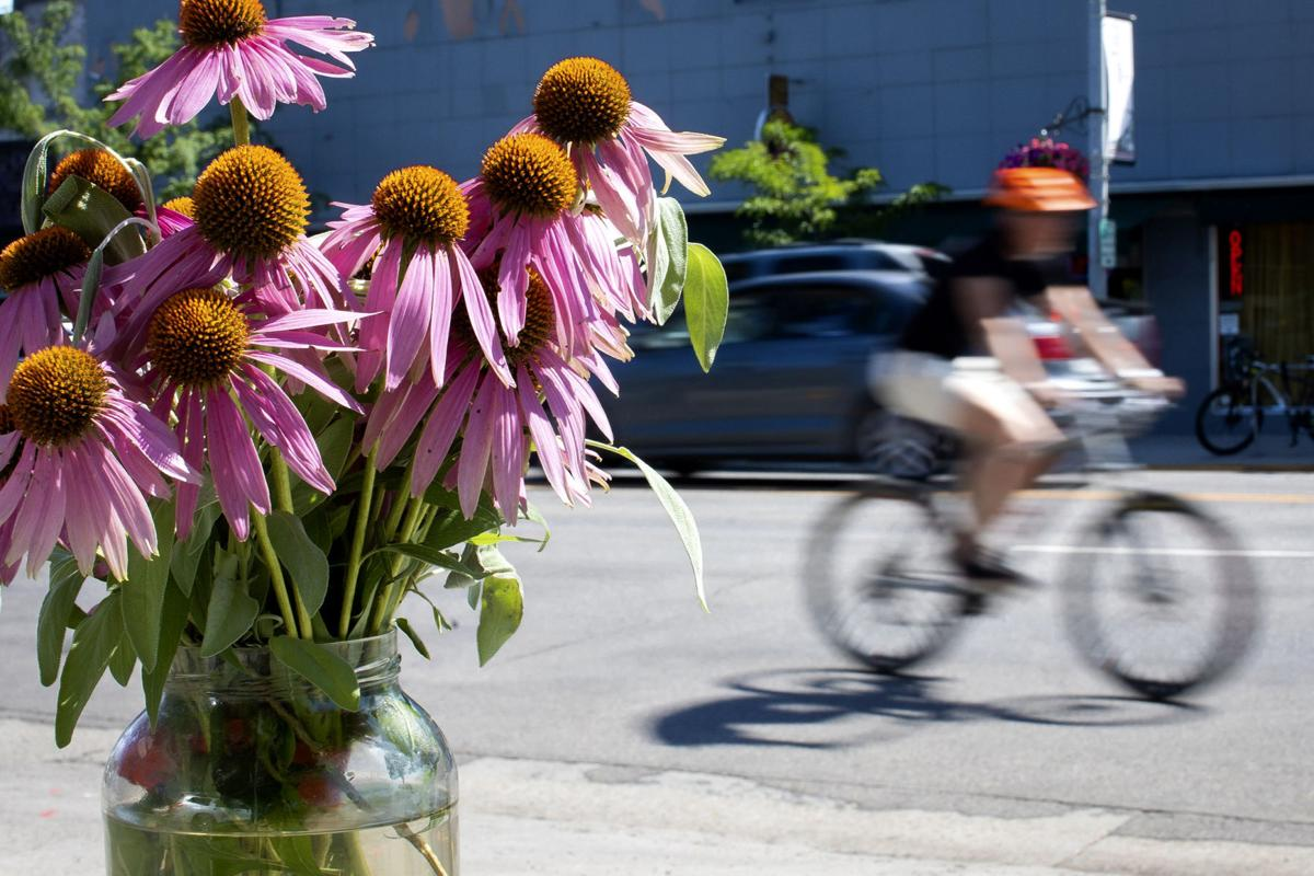 Flowers at crash site of vehicle vs. bicyclist