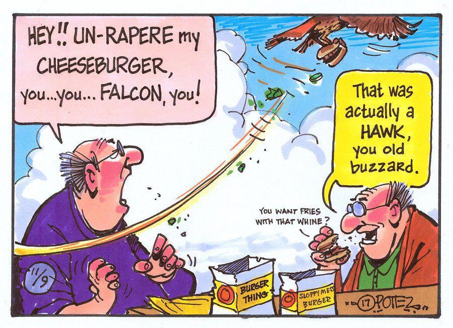 Burger-stealing bird