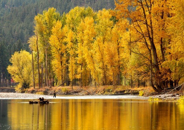 Discounted hunting fishing licenses cost montana fwp 4m for Montana out of state fishing license