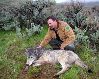 Wolf Lawsuit