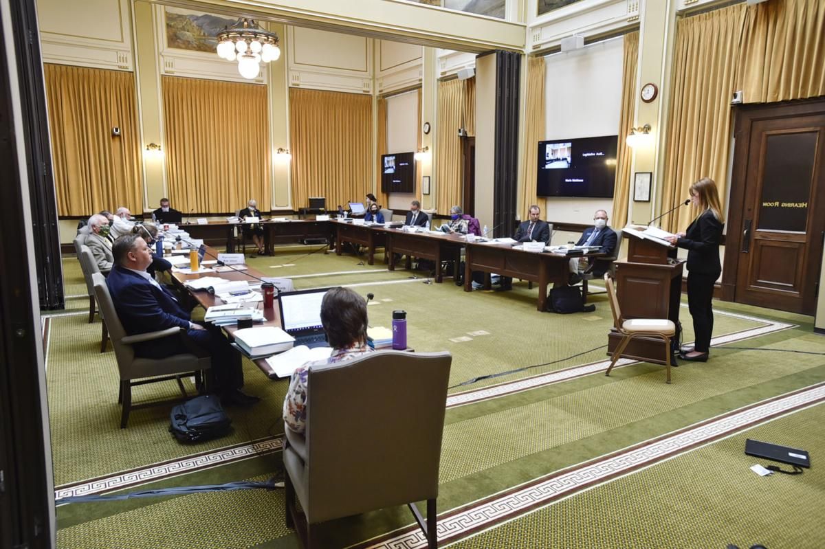 The Legislative Audit Committee hears testimony Tuesday regarding an audit of the Department of Health and Human Services at the State Capitol.
