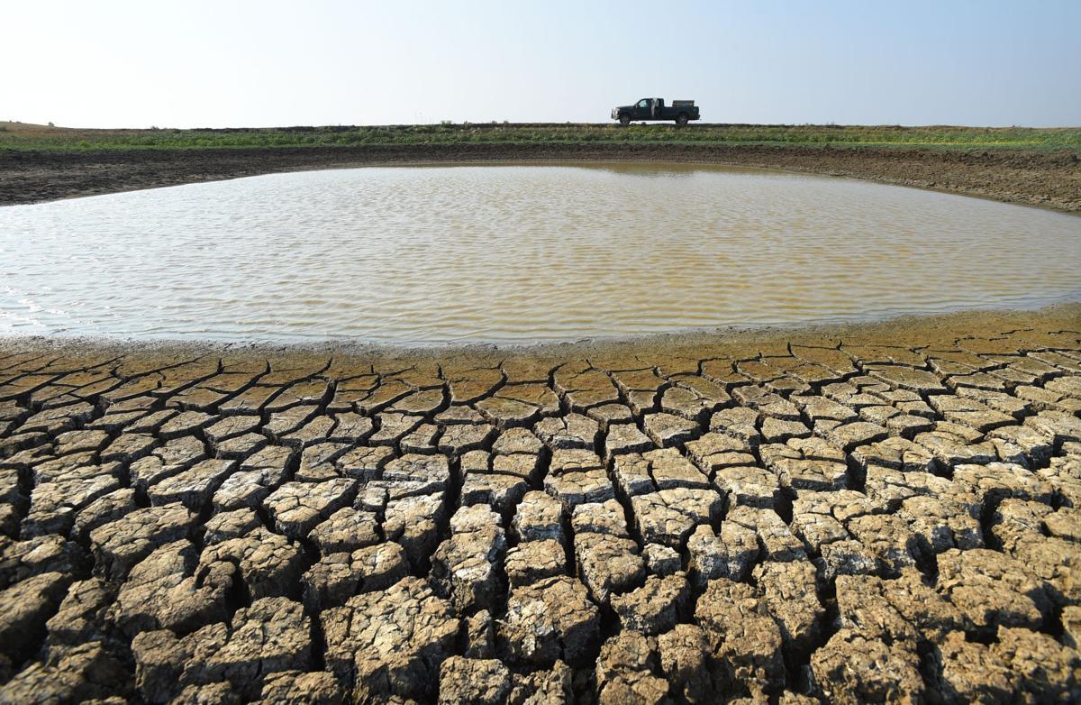 Malta drought