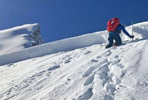 2 skiers injured in Cooke City-area avalanche