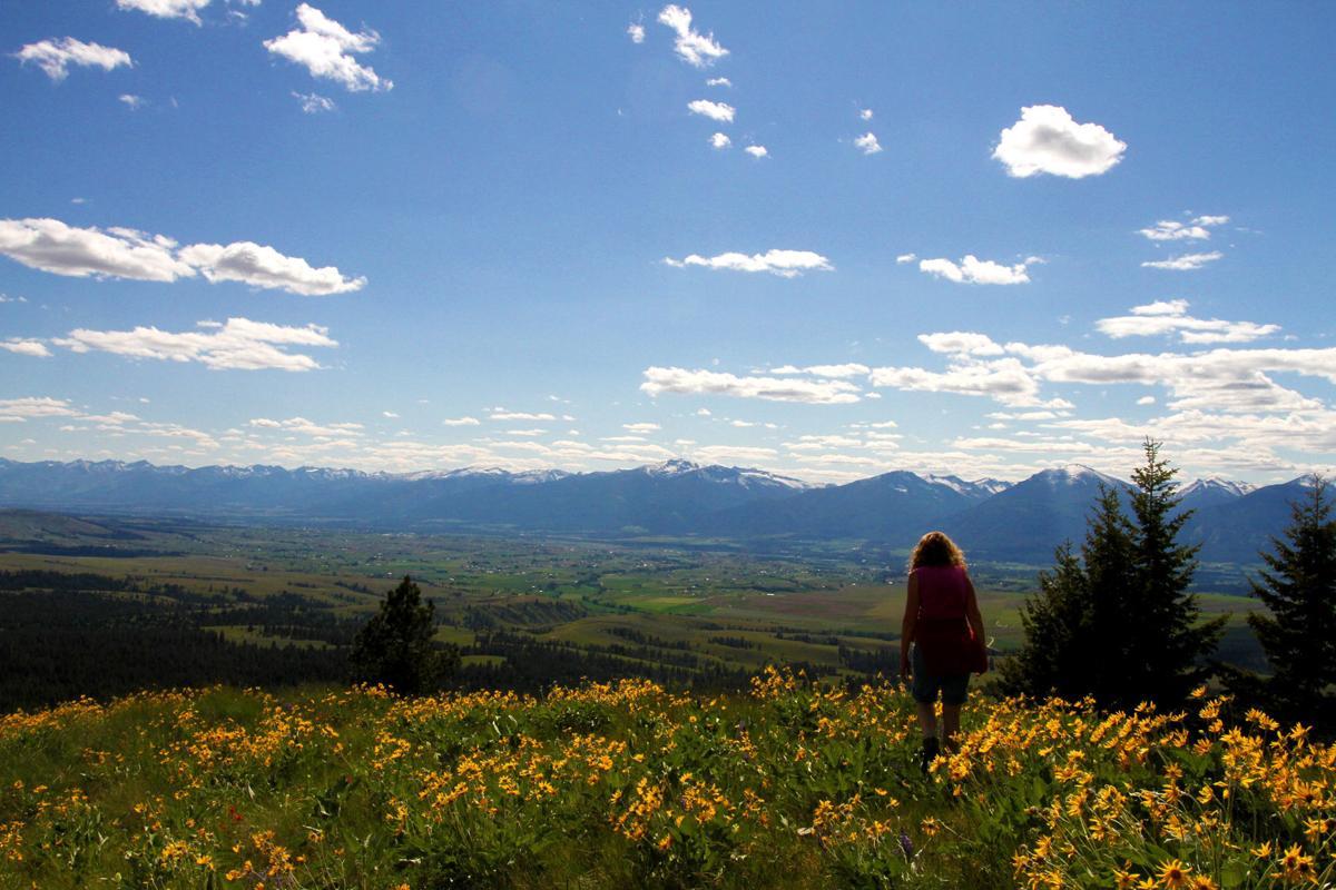 Sapphire Mountains