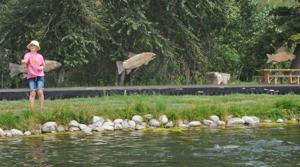 From fish food to endangered sturgeon, helping aquatic species is aim of Bozeman tech center