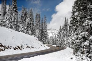 Yellowstone closes Dunraven Pass for season