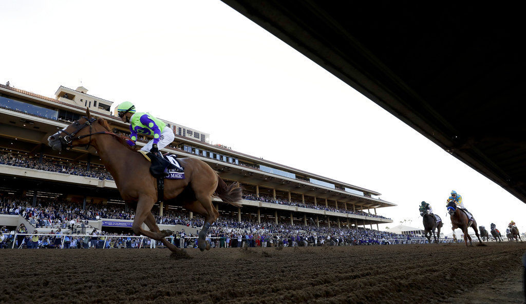 Breeders Cup Juvenile Horse Racing