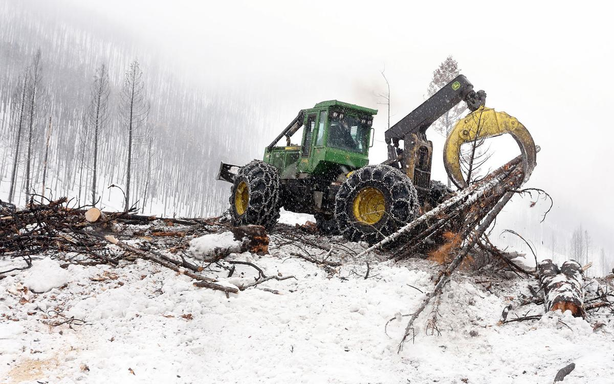 Roaring Lion Salvage skidder