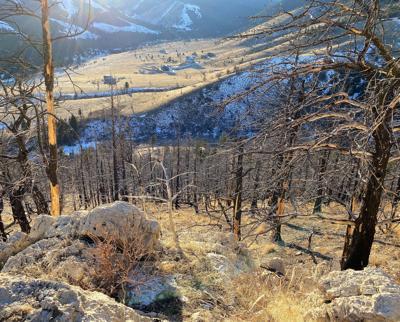 West Fork Rock Creek