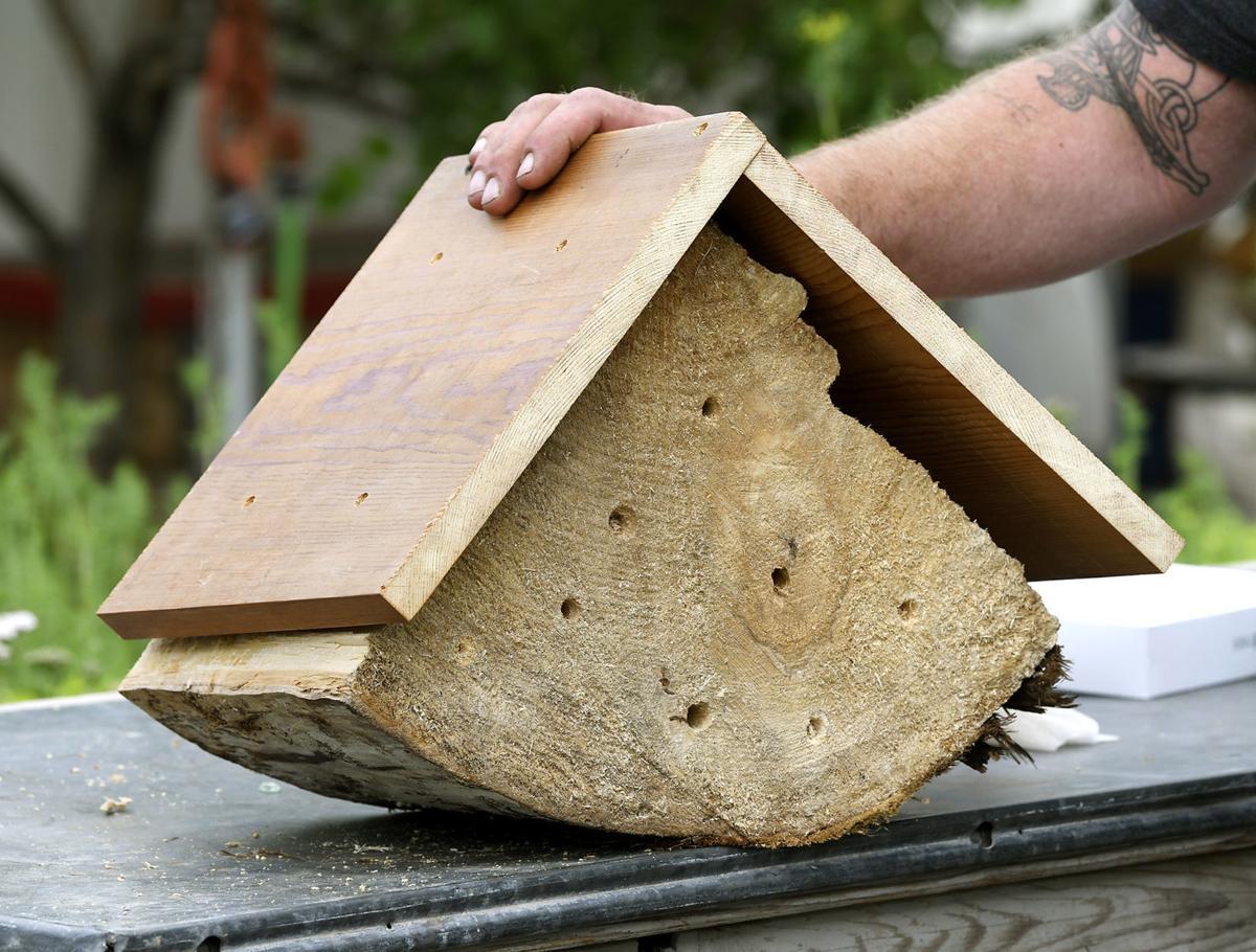 Bee Workshop 2