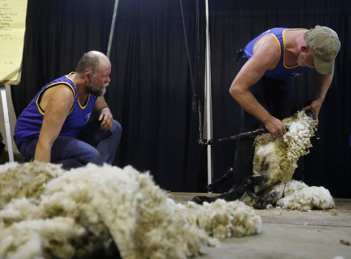 Annual Montana Wool Growers Convention