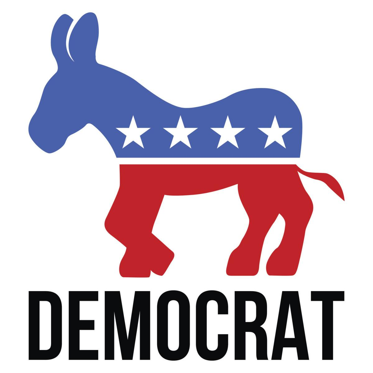 the flag for the democrats with a donkey