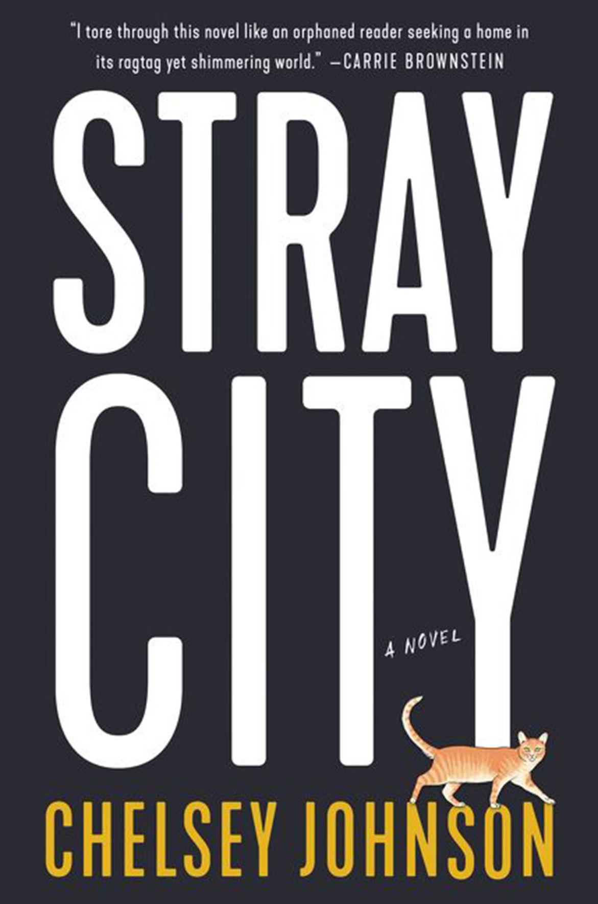 """Stray City"" by Chelsey Johnson"