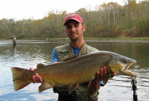 Fly Angler Has 2 Techniques For Hooking Big Brown Trout