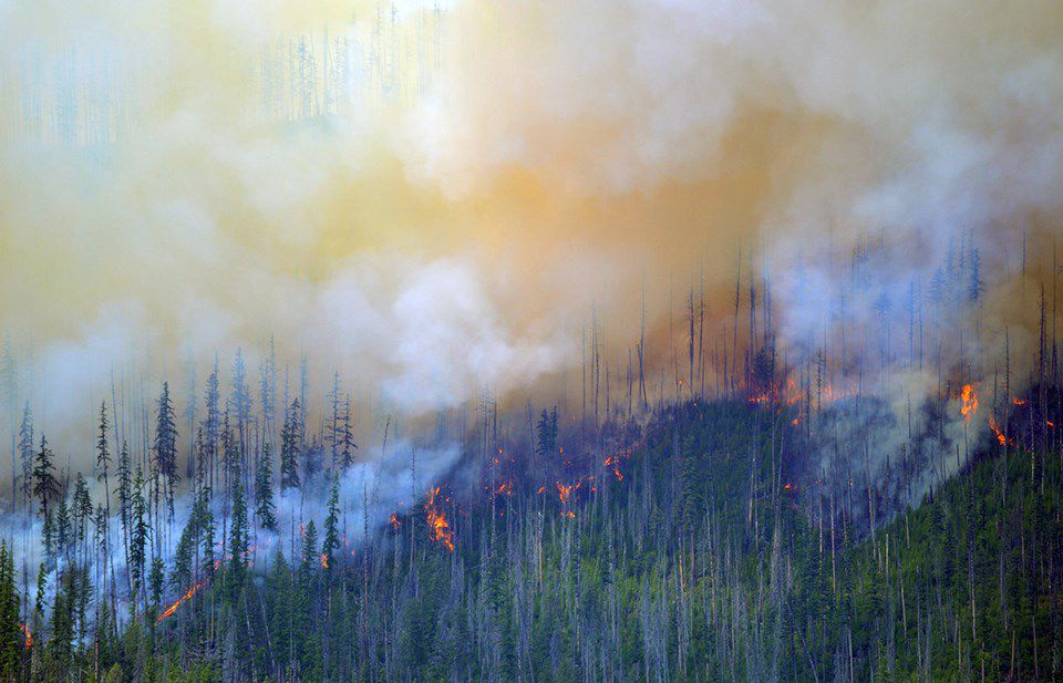 Howe Ridge fire
