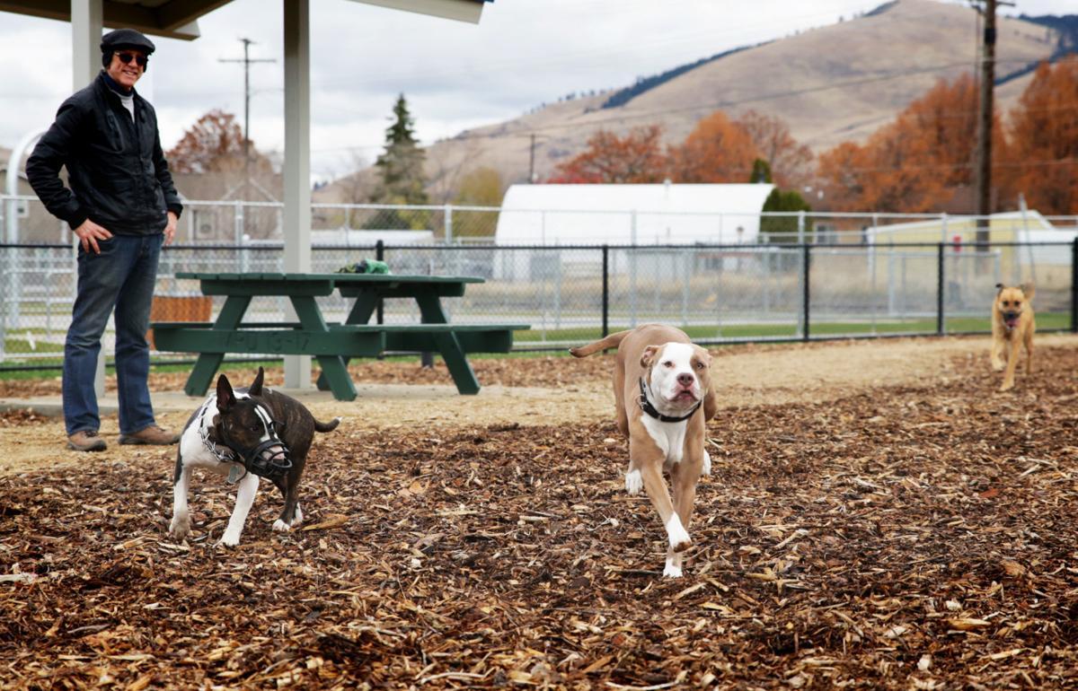 110618 dog park 02 ps.jpg