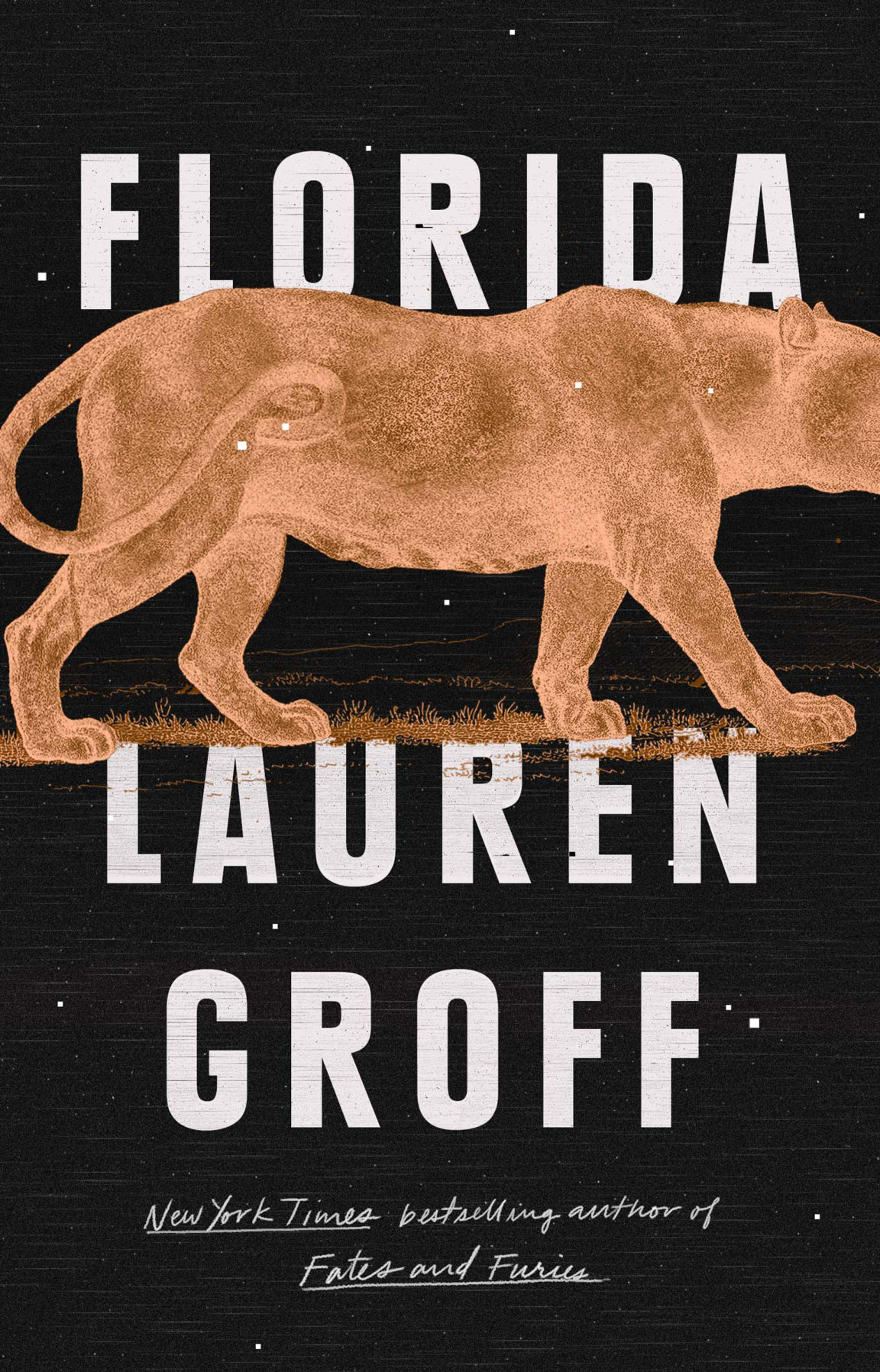 """""""Florida"""" by Lauren Groff; Riverhead Books (275 pages, $27)."""
