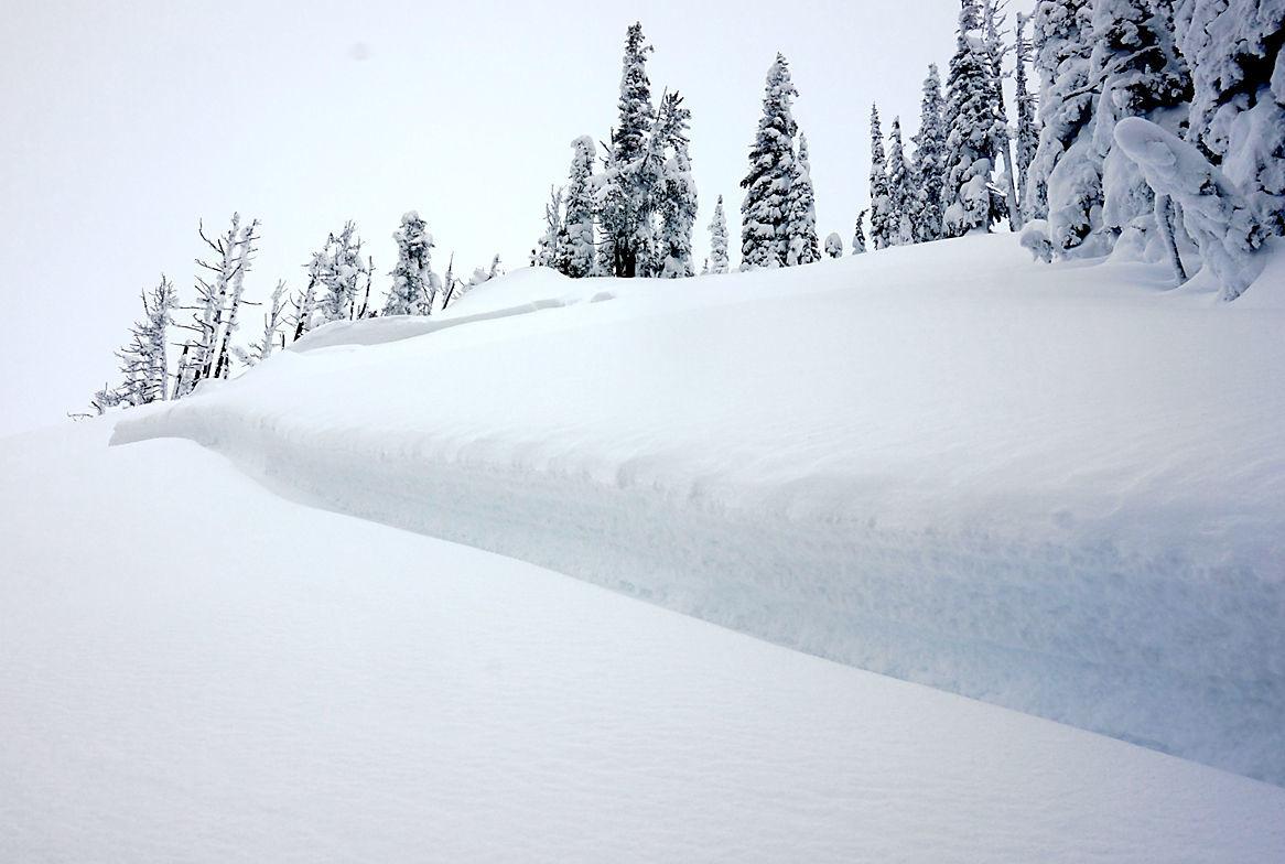 Swede Creek