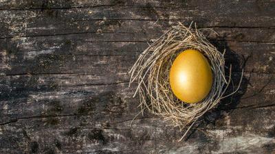 Nest egg retirement