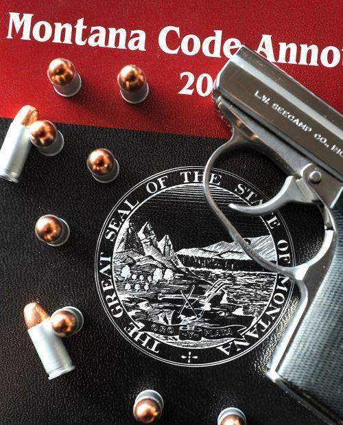 concealed weapon gun bullets guns handgun pistol firearm carry