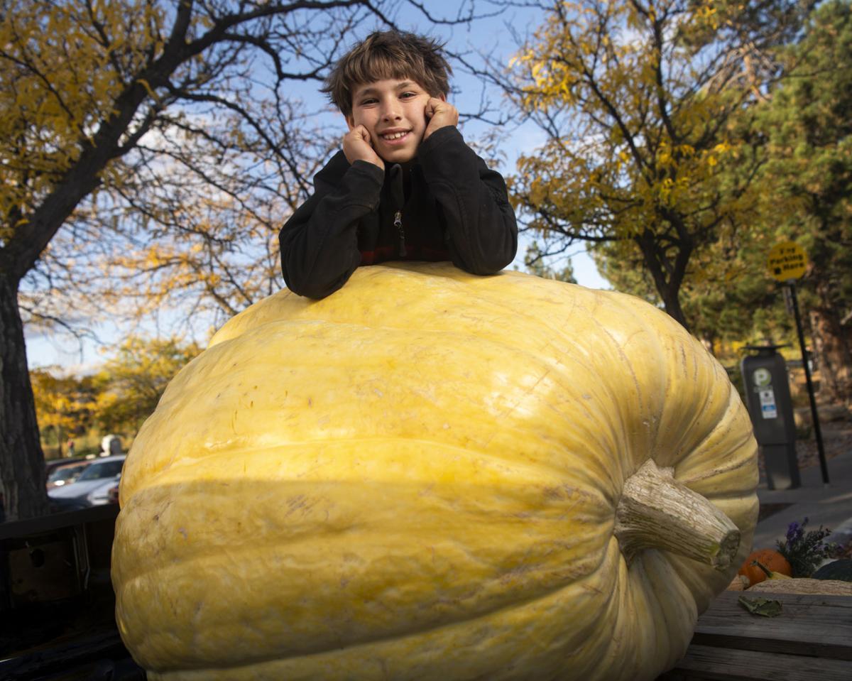 Photo: 6 months, 600-pound pumpkin 02