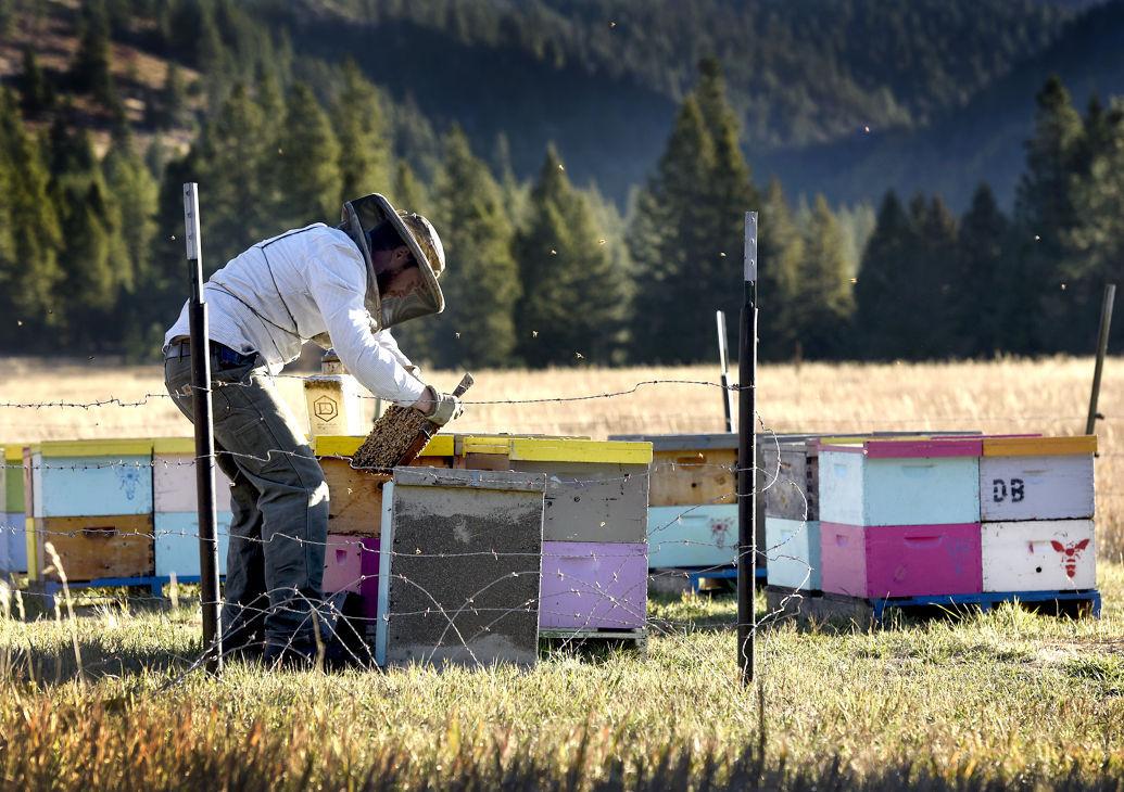 101815 beekeeper1 kw.jpg