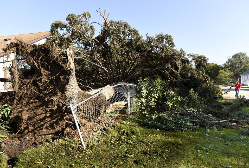 Missoula storm aftermath 2 (IR copy)