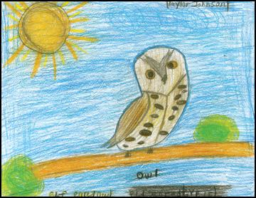 Whooo Are You? Philipsburg fourth grade studies owls