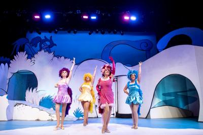 Seussical the musical 01 (copy)