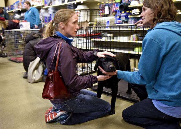 Animal Shelter Holds Adoption Event In Missoula