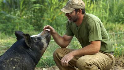 'The Last Pig'