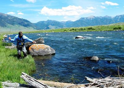 Upper Madison River